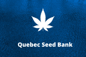 quebec seed bank